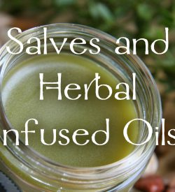 Salves and Herbal Infused Oils