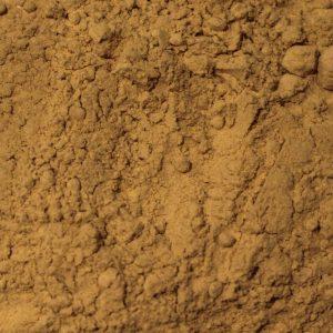 Cordyceps Mushroom Powder, Organic